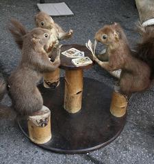 squirrels playing poker